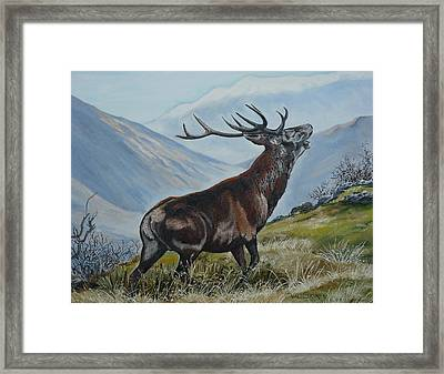 Deer Country Framed Print by Val Stokes
