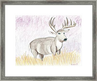Deer In The Grass At Dusk Framed Print by Fred Hanna