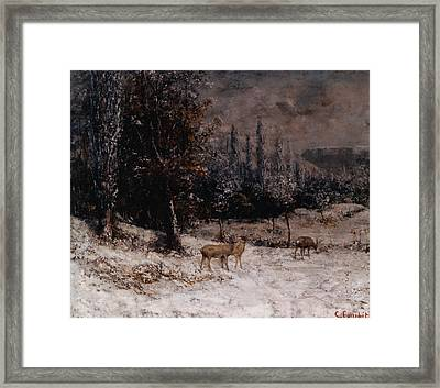 Deer In The Snow Framed Print by Gustave  Courbet