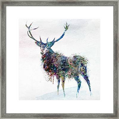 Deer In Watercolor Framed Print by Marian Voicu