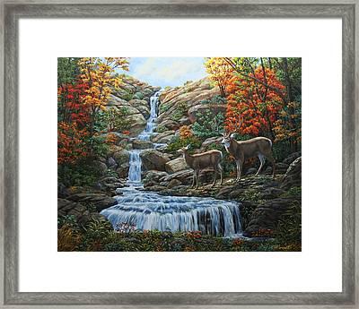 Deer Painting - Tranquil Deer Cove Framed Print