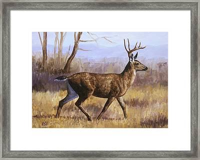 Deer Painting - Trotting Buck Framed Print