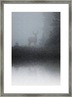 Deer Reflecting Framed Print by Diane Alexander