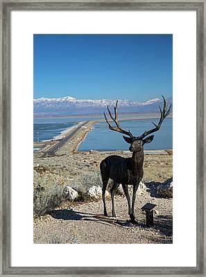 Deer Sculpture Framed Print by Jim West