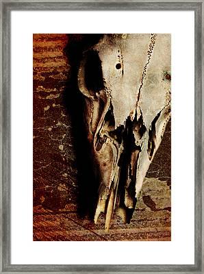 Deer Skull Framed Print