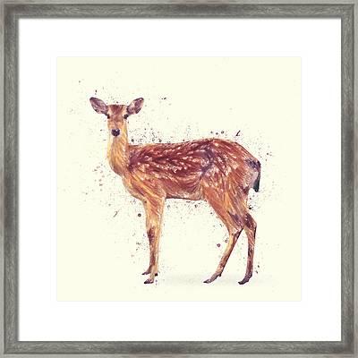 Deer Study Framed Print by Taylan Apukovska