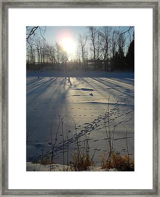 Deer Tracks On The River Framed Print