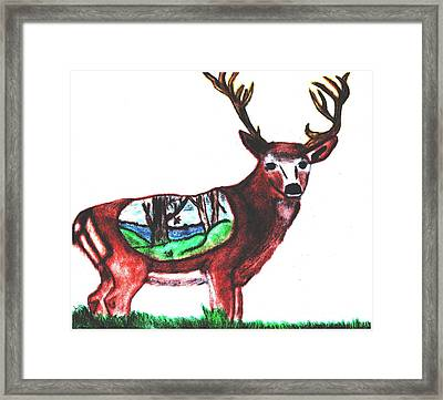 Deer World Framed Print by Shaunna Juuti