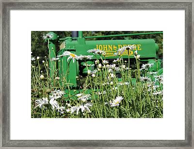 Deere 1 Framed Print by Lynn Sprowl