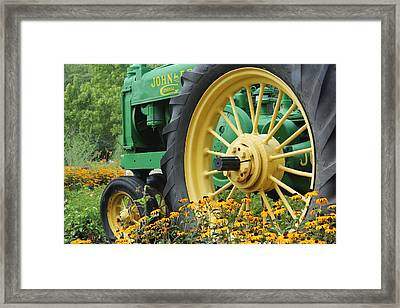 Deere 2 Framed Print by Lynn Sprowl