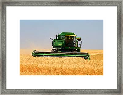 Deere Field Framed Print by Jason Drake