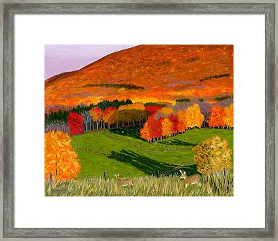 Deer's Eye View Of Bear Meadows Farm Framed Print