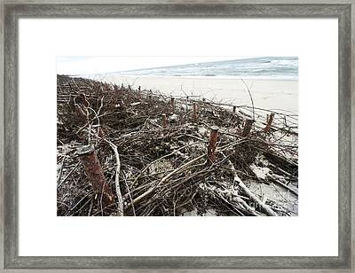 Defenses To Prevent Sand Movement Framed Print by RIA Novosti