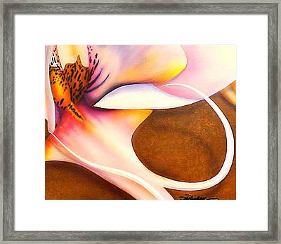 Defined Fine Lines Framed Print by Darren Robinson