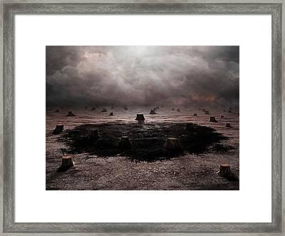 Deforestation Framed Print by Andrzej Wojcicki