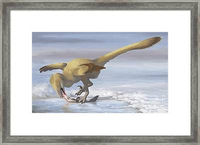 Deinonychus Antirrhopus Preys On A Fish Framed Print by Emily Willoughby