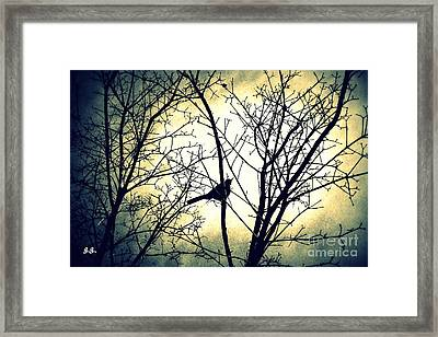 Deja Vu Framed Print by Geri Glavis