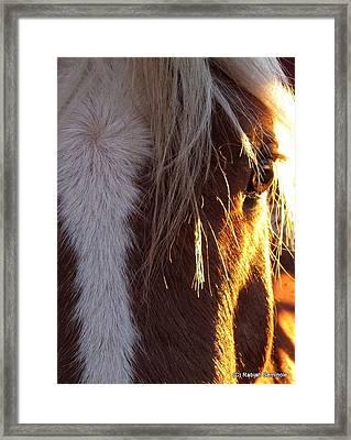 Dejango Framed Print
