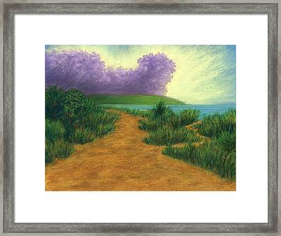 Del Mar Trails 03 Framed Print