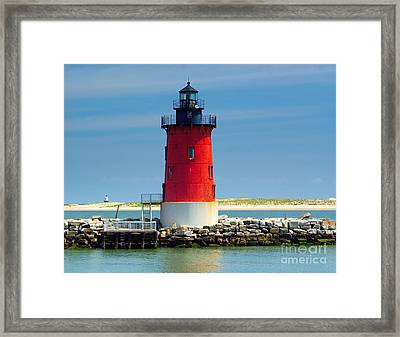 Delaware Breakwater Lighthouse Framed Print by Nick Zelinsky