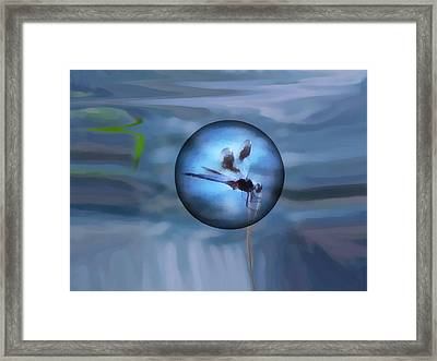 Delayed Flight Framed Print by Wendy J St Christopher