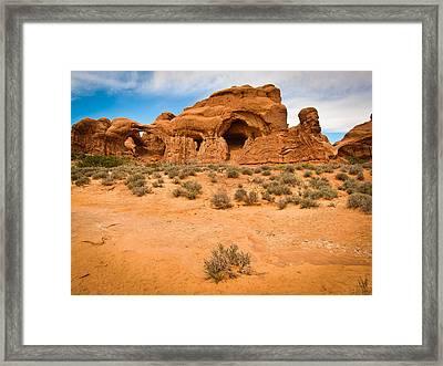 Delectably Delicate Desert Framed Print