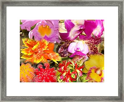 Delicate And Rustic Flowers Framed Print by Van Ness