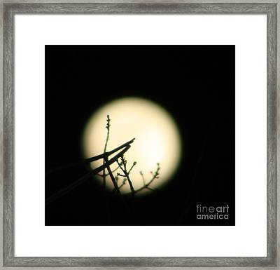 Delicate Balance Moon Framed Print by Nancy TeWinkel Lauren
