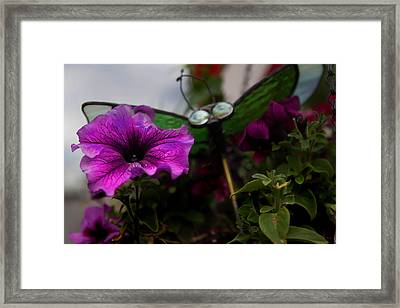 Delicate Beauty Framed Print