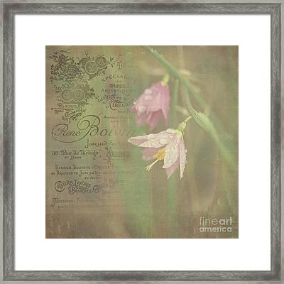 Delicate Blooms Framed Print