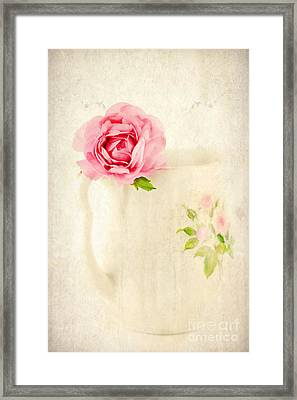 Delicate Framed Print by Darren Fisher