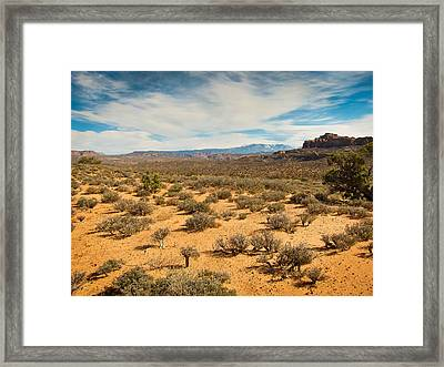 Delicate Earth Framed Print