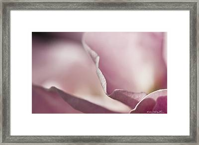 Framed Print featuring the photograph Delicate Edges by Kathy Ponce