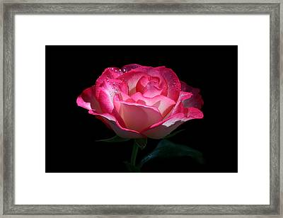 Framed Print featuring the photograph Delicate Fountain by Doug Norkum