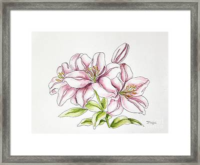 Delicate Lilies Framed Print