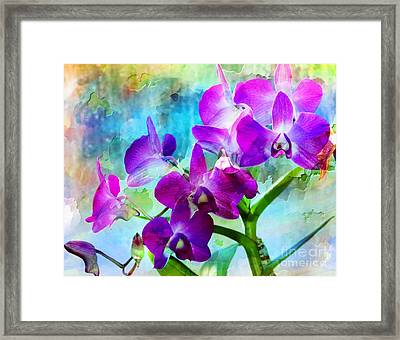Delicate Orchids Framed Print by Kathleen Struckle