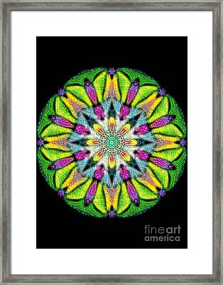 Delicate Passion Mandala Textured Framed Print