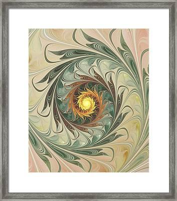 Delicate Spiral Framed Print
