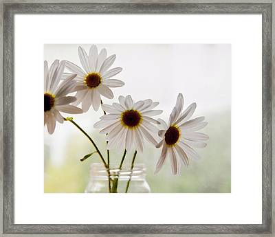Framed Print featuring the photograph Delicate by Terri Harper