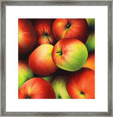 Delicious Apples Framed Print by Natasha Denger