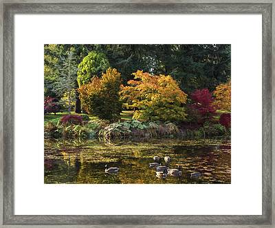 Delicious Autumn - Autumn Art Framed Print
