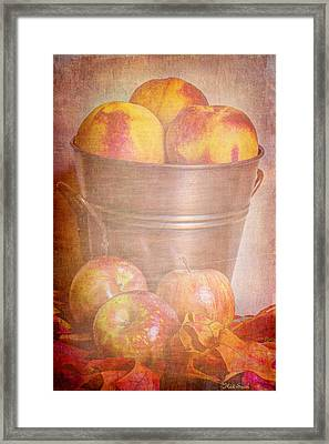Delicious  Framed Print by Heidi Smith