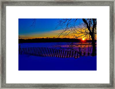 Delight Behind The Fence Framed Print