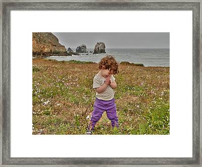 Delight Framed Print by Nick David