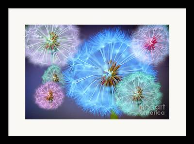 Flowers Digital Art Framed Prints