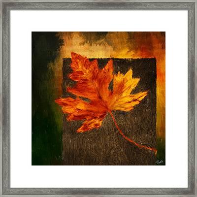 Delightful Fall Framed Print by Lourry Legarde