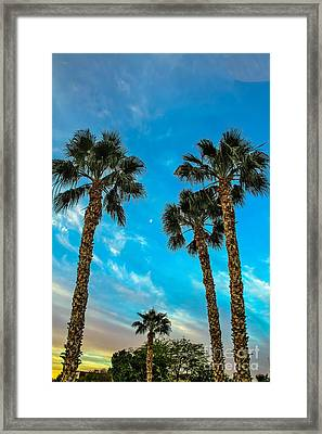 Delightful Morning Framed Print by Robert Bales