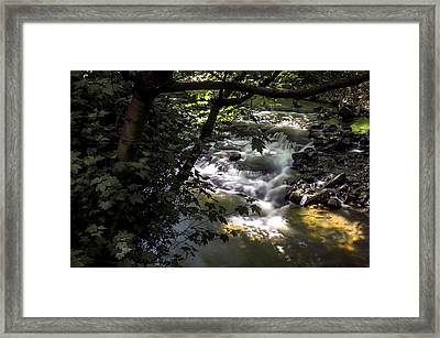 Dell Framed Print
