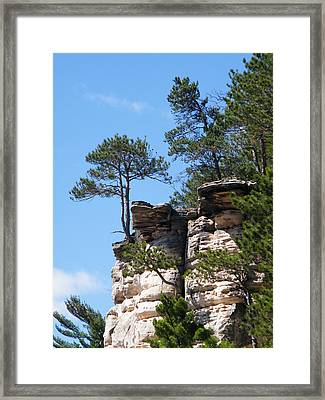 Dells Tree Framed Print