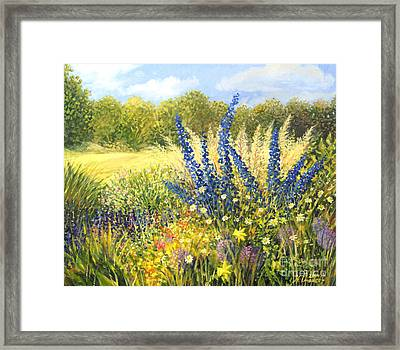 Delphinium Framed Print by Kiril Stanchev